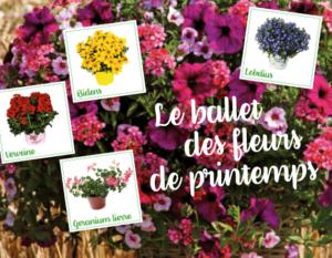 Ballet fleurs de printemps